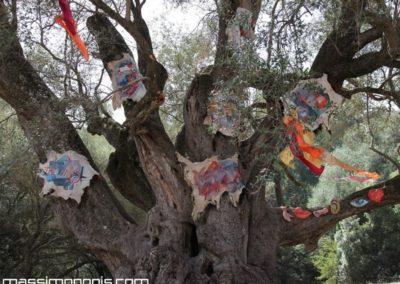 albero con pelli e ex voto